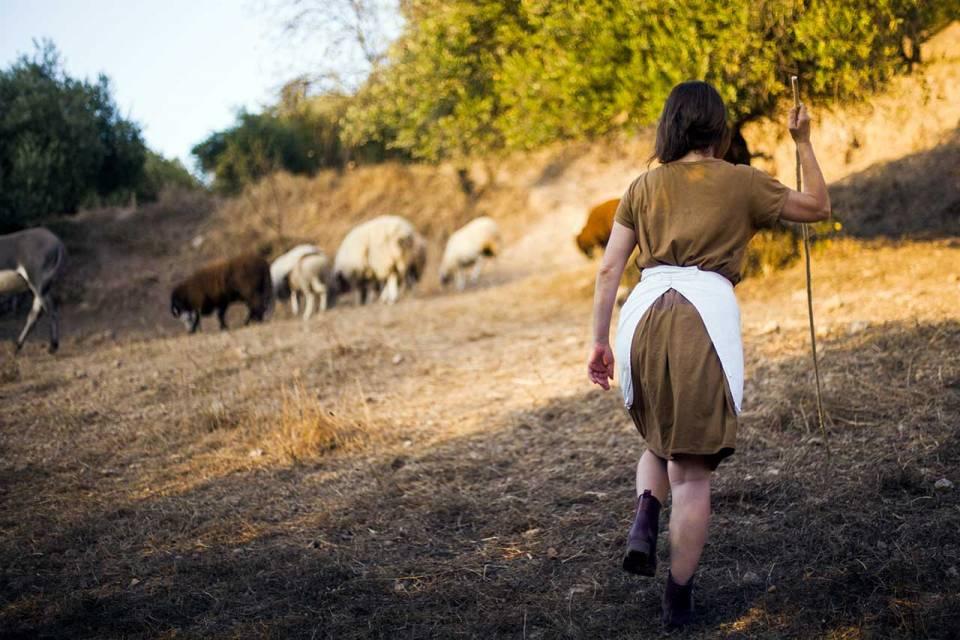 métiers de la laine
