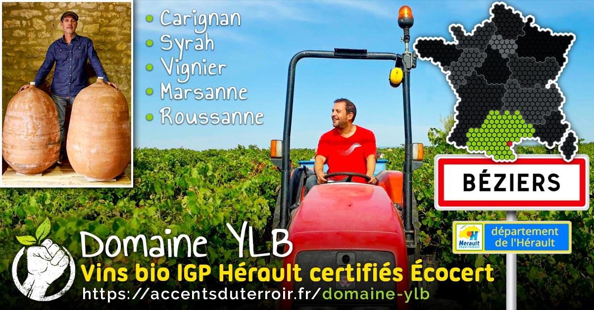 viticulteur bio de l'Hérault