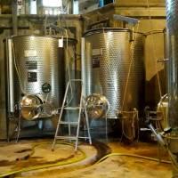 cuves de vin