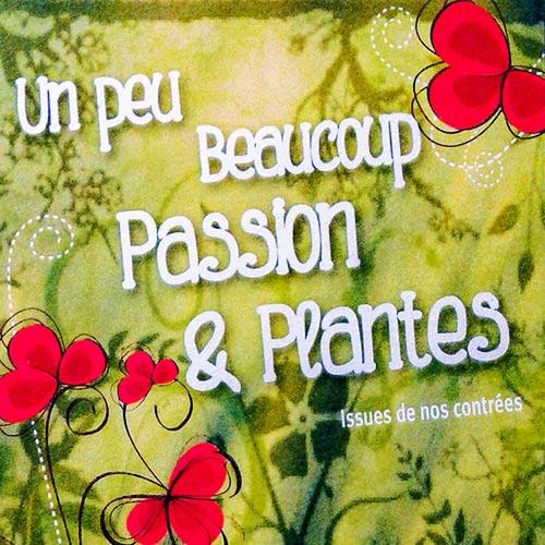 un peu beaucoup passion plantes l