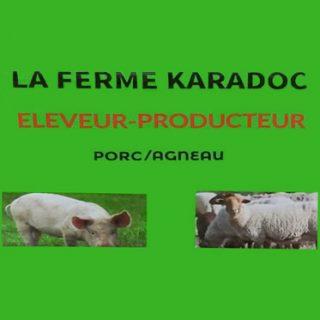 ferme karadoc eleveur porcin l 320x320